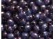 rokajl  sv.modrý korálek s fialovým pokovem